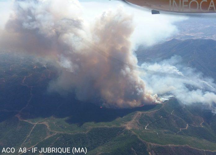 Feuer in der Sierra Bermeja